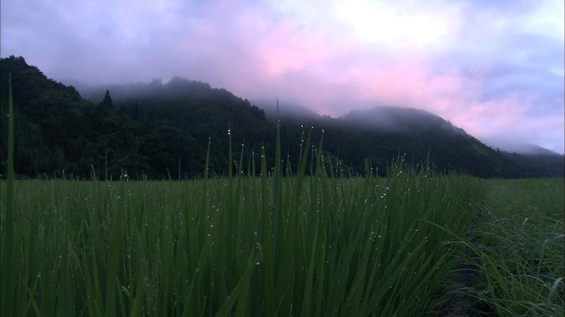 『天に栄える村』2(c)桜映画社