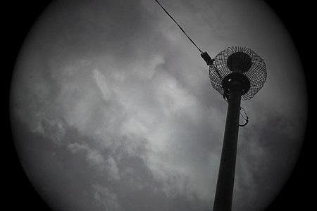 「Adamski」 ©2014 CALF